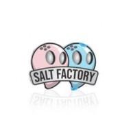 Salt Factory (1)
