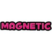 Magnetic Liquids (1)